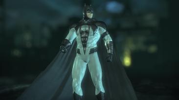 "Batman: Arkham City ""Batman Sinestro Corps standart"""
