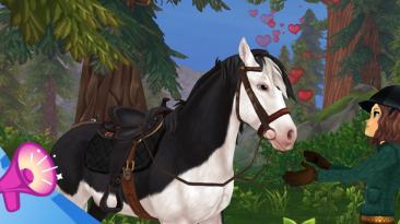 Улучшенная система ухода за лошадьми в Star Stable
