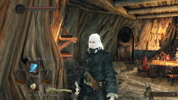 Dark Souls 2:Scholar of the First Sin: Сохранение/SaveGame (Женский персонаж, колдун)