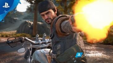 Не только Steam: PC-версия Days Gone подтверждена к релизу на еще одной цифровой платформе