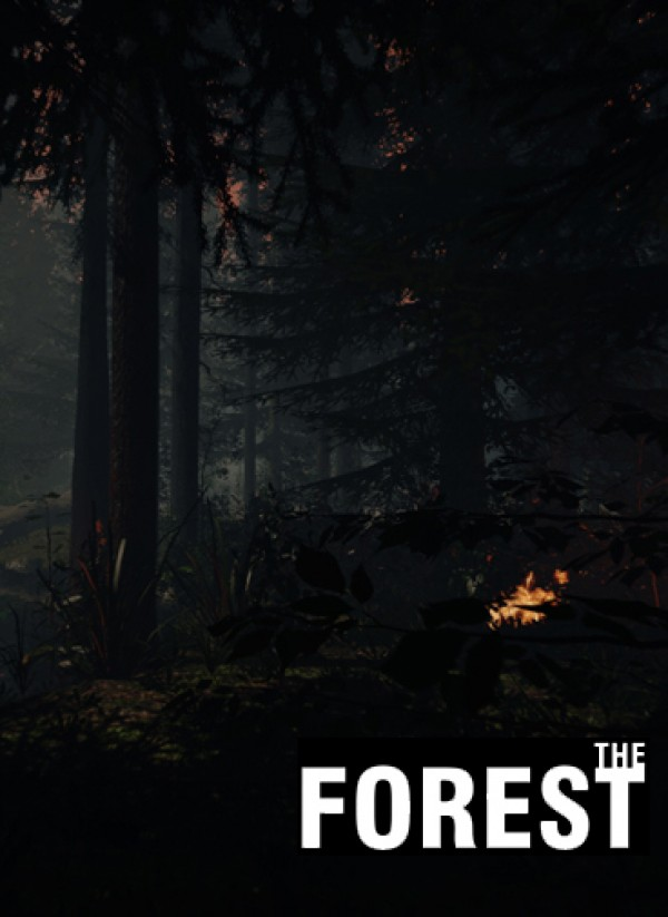Читы the forest 0.08