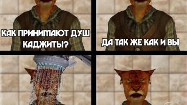 Как принимают душ каджиты