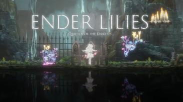 Разработчики изменили региональные цены на Ender Lilies: Quietus of the Knights