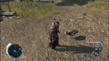 Assassin's Creed 3 - Пасхалка [Индюк Ассасин]