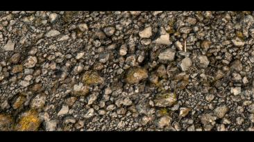 Этот текстурный пак 8K HD для Skyrim Special Edition содержит текстуры ландшафтов, созданных с помощью 3D-сканов