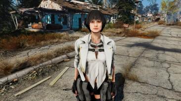 """Fallout 4 """"Леди из DMC5 Спутница"""""""