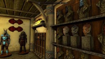 Фанат Skyrim показал шикарно обставленную коллекцию драконорожденного