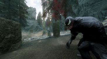 """Elder Scrolls 5: Skyrim """"Venom Follower / спутник Веном"""""""