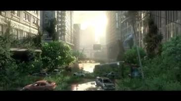 Всё о кордицепсе из The Last of Us