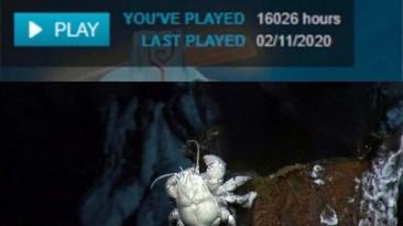 Проведенное время в игре
