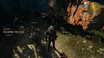 "Witcher 3: Wild Hunt ""Новое задание - Побег из клетки"""