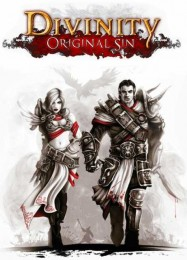 Обложка игры Divinity: Original Sin