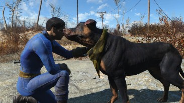 "Fallout 4 ""Модификация позволяет гладить любую собаку пустоши"""