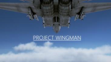 """Трейлер и демо-версия Project Wingman - """"духовный наследник"""" Ace Combat"""