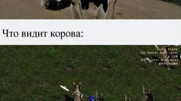 Что видит корова