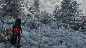 """Witcher 3 """"Сноуборд"""""""