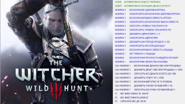 The Witcher 3: Wild Hunt / Ведьмак 3: Дикая Охота: Трейнер/Trainer (+27) [1.11] [64 Bit] {Baracuda}