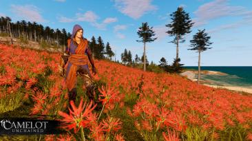 Свежая информация о луте, его содержимом и о новом биоме в MMORPG Camelot Unchained
