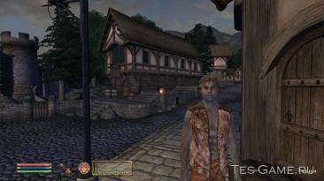 """Elder Scrolls 4: Oblivion, the """"Лорные NPC в Корроле"""""""