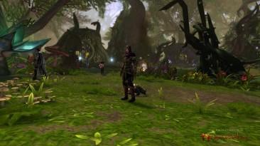 Игроки в Neverwinter Online массово жалуются на последнее обновление