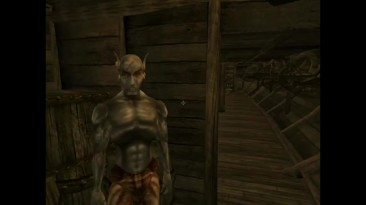 Скоростное прохождение The Elder Scrolls III Morrowind (4:19)