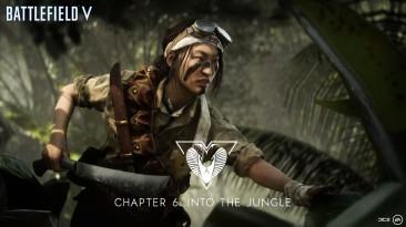 Мисаки Ямасиро - элитный боец шестого сезона Battlefield V