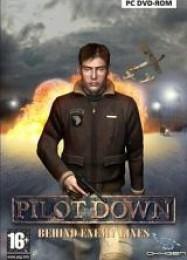 Обложка игры Pilot Down: Behind Enemy Lines