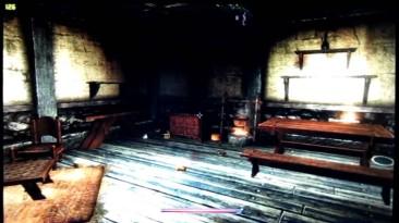 The Elder Scrolls V: Skyrim: Совет ( Решение проблемы физики предметов при отключённом Vsync)