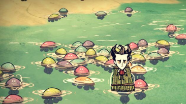"Don't Starve ""Animal Variety 1.0"""