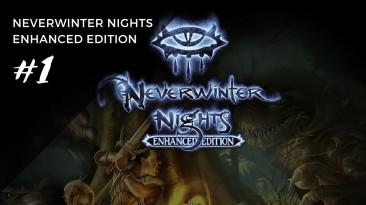 Русификатор текста и звука для Neverwinter Nights Enhanced Edition