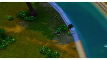 """The Sims 4 """"Дефолтные """"текстуры Тамриэля"""" из игры The Elder Scrolls V: Skyrim"""""""