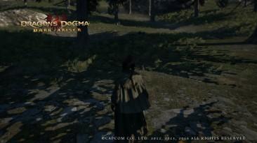 "Dragon's Dogma ""Мод убирающий водные знаки Capcom со скринов"""