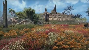 TES Online - Dragonhold и обновление 24: новые подробности