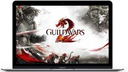 ArenaNet объявила что прекращает поддержку Guild Wars 2 на Mac