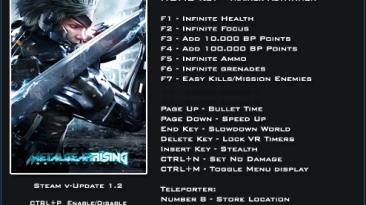 Metal Gear Rising ~ Revengeance: Трейнер/Trainer (+21) [1.2] {LinGon}