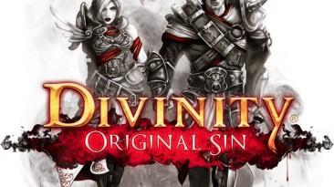 Divinity: Original Sin наконец-то вышла на Linux и OS X