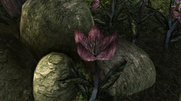 "Morrowind ""Мод Vanilla-Based Willow Flower"""
