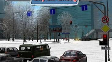 Стоит ли ждать мультиплер в игре 3D Инструктор / City Car Driving?