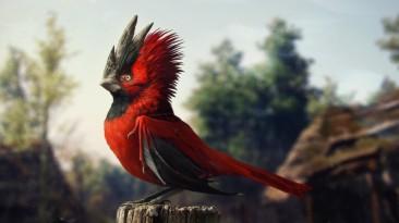 CD Projekt RED подтвердила свое намерение оставаться независимой
