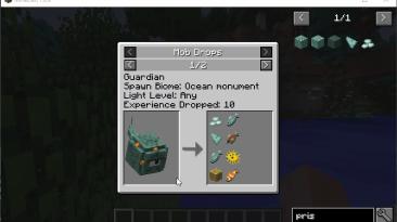 """Minecraft """"Отображение информации о дропе [1.16.1]"""""""