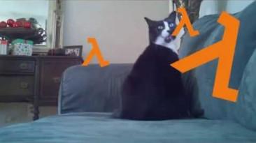 HL против Кота