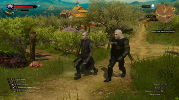 """Witcher 3: Wild Hunt """"Компаньоны 2.0"""""""
