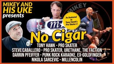 Тони Хоук сделал кавер на лучшую песню из Tony Hawk's Pro Skater