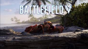 Весьма интересный секрет в DLC к Battlefield V