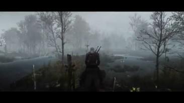 "Witcher 3: Wild Hunt, the ""Swamp zone lighting mod"""