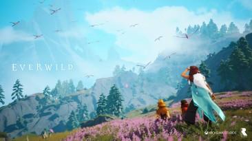 Директор Everwild покидает Rare без объяснения причин, но с оптимизмом смотрит на развитие проекта