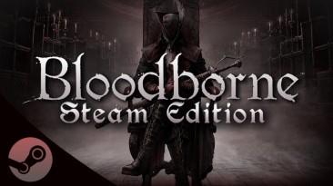 Это могут быть первые скриншоты из компьютерной версии Bloodborne