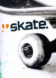 Обложка игры Skate