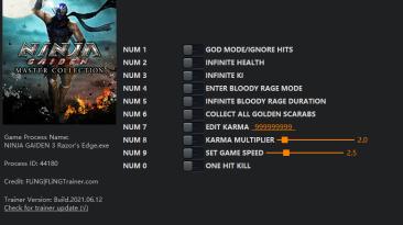 Ninja Gaiden ~ Master Collection (Ninja Gaiden 3: Razor's Edge): Трейнер/Trainer (+10) [1.0] {FLiNG}