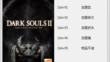 Dark Souls 2: Scholar of the First Sin: Трейнер/Trainer (+5) [1.01] {403156253}